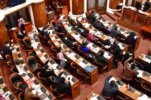 AMP.- Bolivia.- El Parlamento de Bolivia aprueba la ley para celebrar las elecci