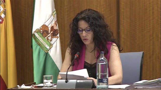 Rocío Ruiz en la Comisión de Igualdad