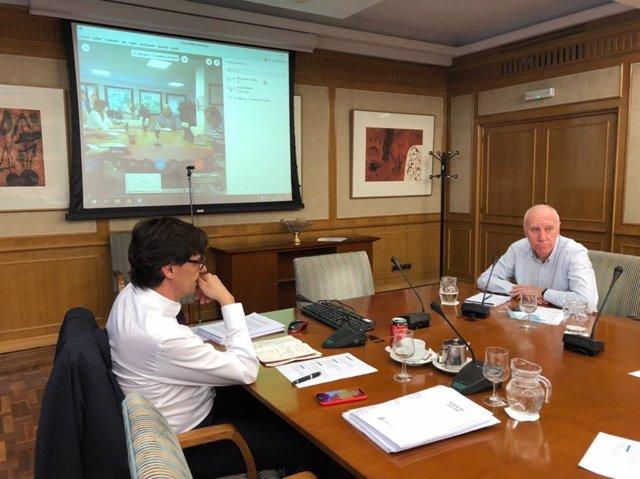 El ministro de Sanidad, Salvador Illa, en una de las videoconferencias con consejeros para estudiar el cambio de fase