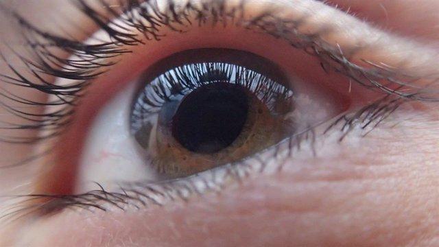 Ojo humano. Retina. Pestañas. Iris. Visión. Oftalmología. óptica. Salud visual