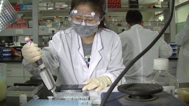 Investigación de la vacuna del coronavirus