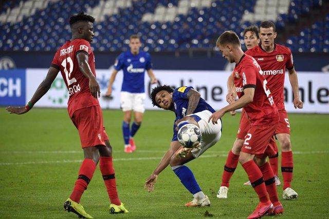 Fútbol/Bundesliga.- (Crónica) El Bayer alarga el gafe del Schalke