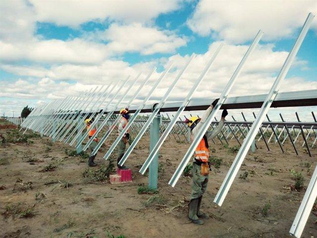 Economía.- Soltec suministra su seguidor 'SF7' a una planta solar de 265 MW en E