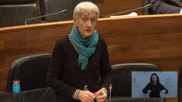 La consejera de Educación, Carmen Suárez, comparece en el Pleno de la Junta General.
