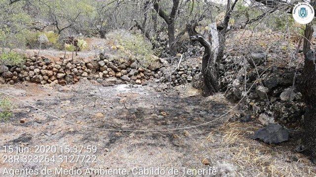 Incendio en una zona rural de Arguayo