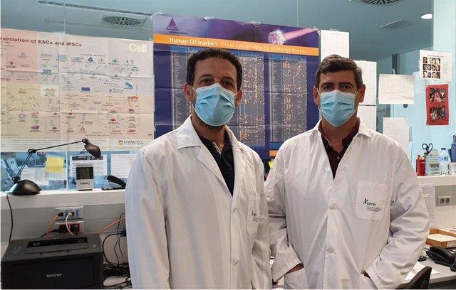 [Medios.Sevilla.Csalud] Np Investigadores Andaluces Revisan El Potencial De La Edición Genómica De Células Madre Para Fines Terapéuticos