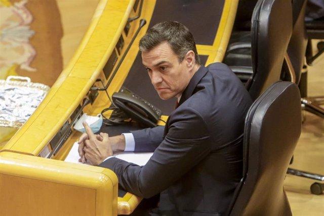 El presidente del Gobierno, Pedro Sánchez, durante la sesión de control al Gobierno en el Senado.