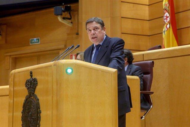El ministro de Agricultura, Luis Planas, durante la sesión plenaria en el Senado.