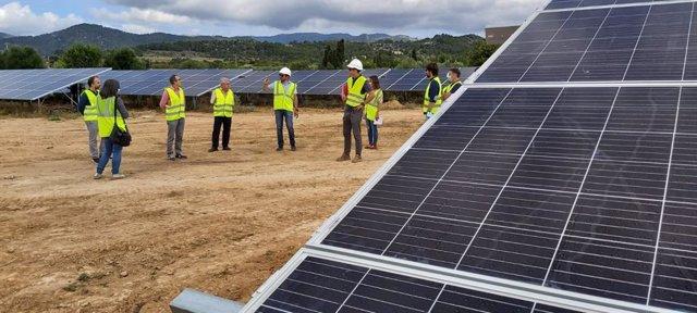Visita a la instalación fotovoltaica que se está construyendo en Consell.