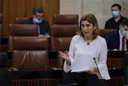La consejera de Empleo, Rocío Blanco, en una imagen de archivo en el Pleno del Parlamento de Andalucía.