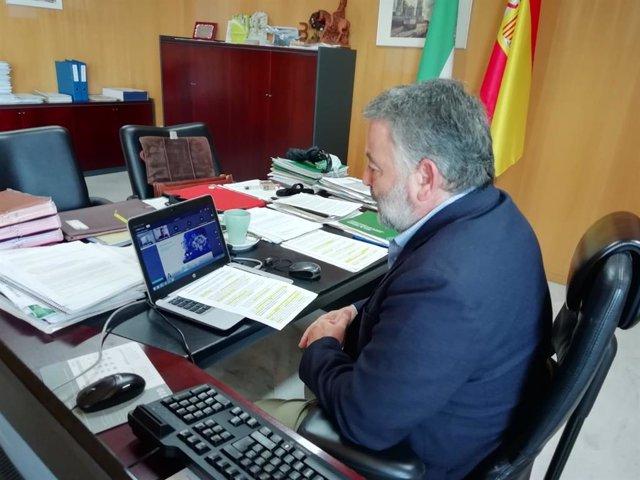 El delegado territorial de Empleo, Formación, Trabajo Autónomo y Economía, Conocimiento, Empresas y Universidad de la Junta en Cádiz, Alberto Cremades, durante el seminario web