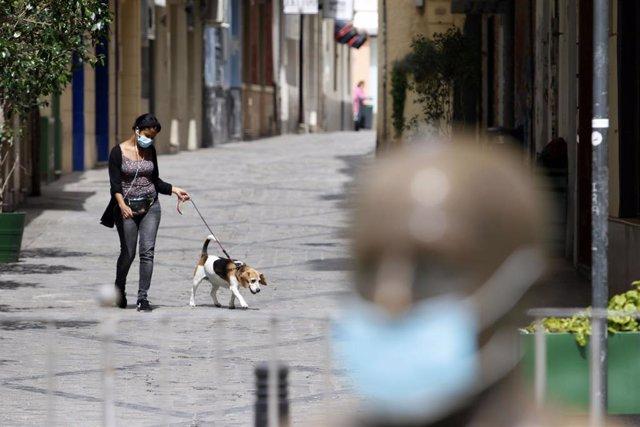 Una señora pasea su perro cerca de la estatua del pintor malagueño, Pablo Picasso, ubicada en la Plaza de la Merced de Málaga, ataviada con una mascarilla para protegerse del virus COVID-19. Málaga a 25 de abril del 2020