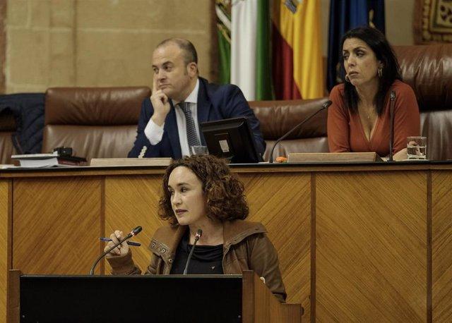 La parlamentaria de Adelante Andalucía Ana Naranjo, en una foto de archivo en el Pleno del Parlamento.