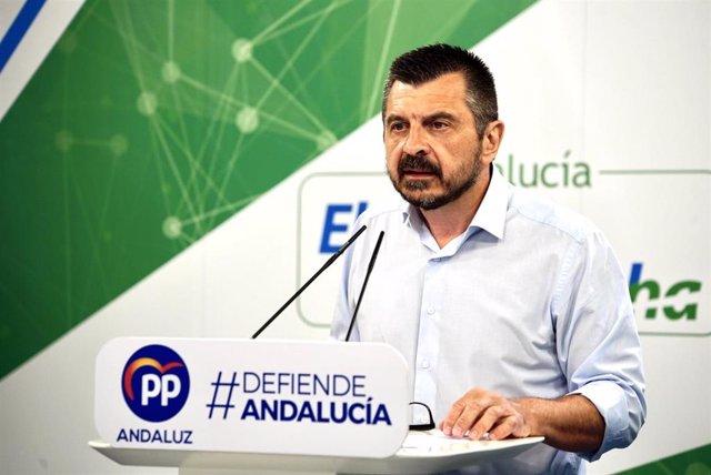 El vicesecretario general del Partido Popular Andaluz, Toni Martín.