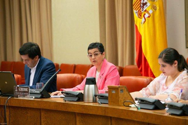 La ministra de Asuntos Exteriores, Unión Europea y Cooperación, Arancha González-Laya, durante su comparecencia ante la Comisión de Cooperación Internacional para el Desarrollo.