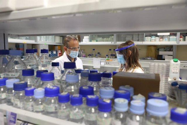 Laboratorio con muestras de coronavirus