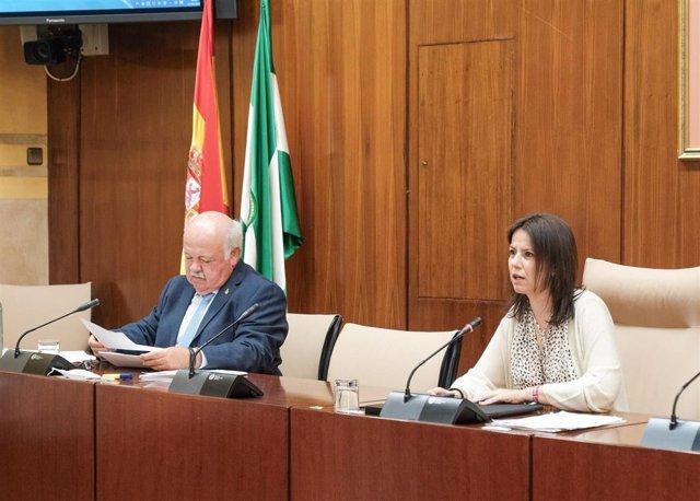 El consejero de Salud y Familias, Jesús Aguirre, comparece en la comisión parlamentaria para la recuperación de Andalucía.