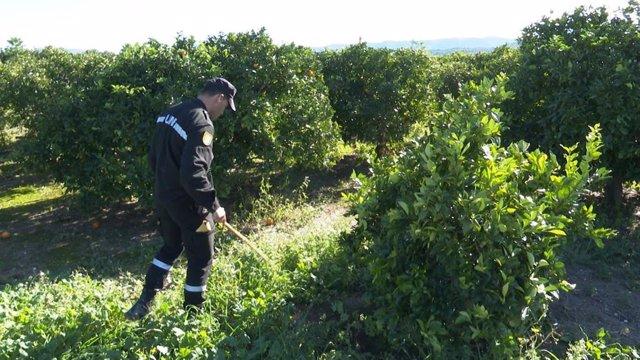 Un militar de la UME buscando a Marta Calvo por Manuel