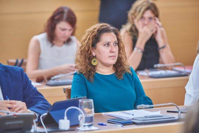 La consejera de Desarrollo Económico del Cabildo de Tenerife, Carmen Luz Baso