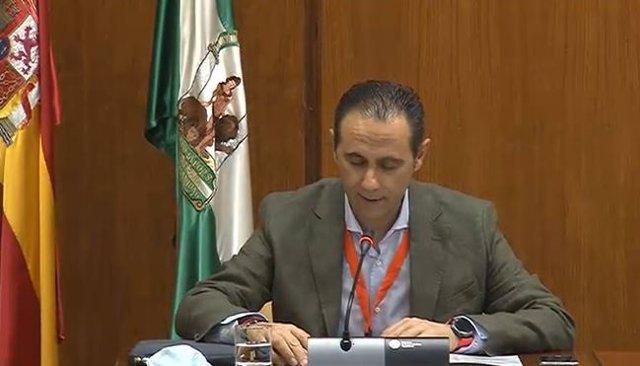 El presidente de CSIF-A, Germán Girela, comparece en la Subcomisión de Políticas Sociales para la recuperación de Andalucía por el Covid