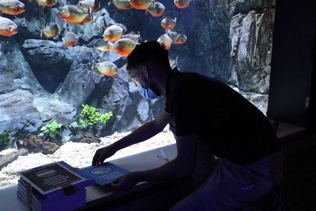 COMUNICADO: Atlantis Aquarium reabre sus puertas
