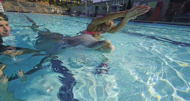 Crean un delfín robótico de gran realismo para sustituir a los de verdad en los