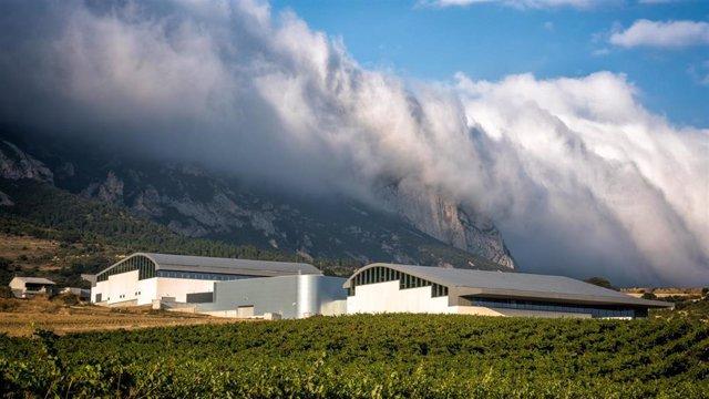 Bodega de Vega Sicilia y Rothschild en Samaniego