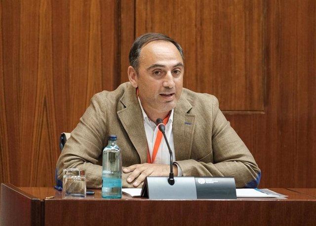 Fernando Acosta, presidente de la Asociación Andaluza de Residencias y Servicios de Atención a los Mayores (Lares)