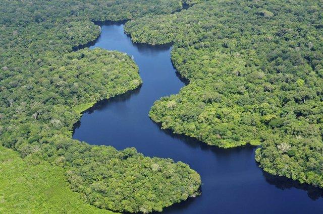Fondos de inversión internacionales avisan a Brasil para que revise sus políticas de deforestación