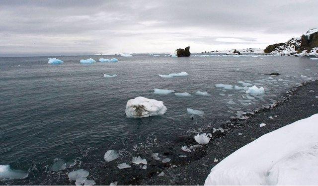 Ártico Ruso