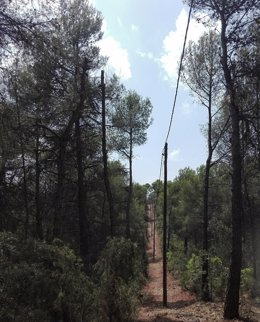 Red Eléctrica De Tercui (Lleida).