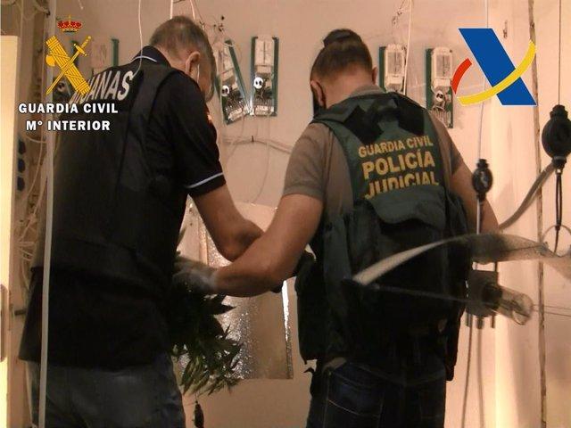 Agentes de la Guardia Civil en el operativo