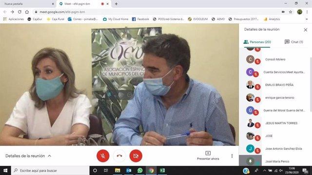 La presidente de AEMO y alcaldesa de Montoro (Córdoba), Ana María Romero, preside la XXVI Asamblea Nacional de AEMO, que se ha celebrado de forma telemática