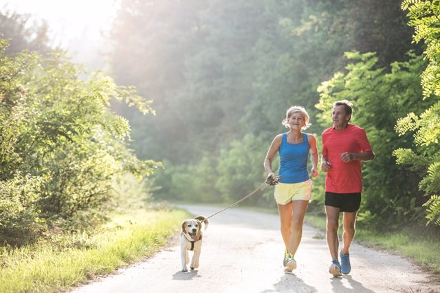 612392982 Senior couple with dog running in green sunny nature