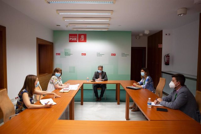 Reunión del PSOE-A con la Asociación de Empresas de Comedores Escolares en el Parlamento andaluz.