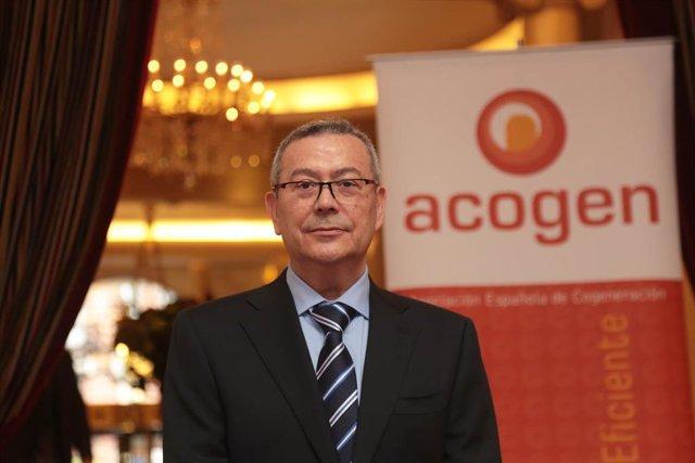 El nuevo presidente de la Asociación Española de Cogeneración (Acogen), Antonio Pérez Palacio.