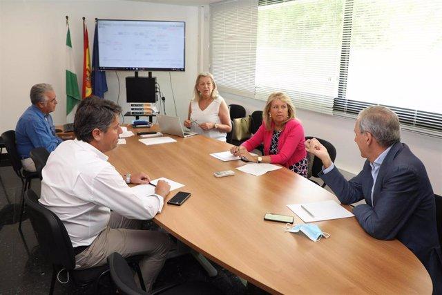 La alcaldesa de Marbella (Málaga), Ángeles Muñoz, durante una visita la oficina del Plan General