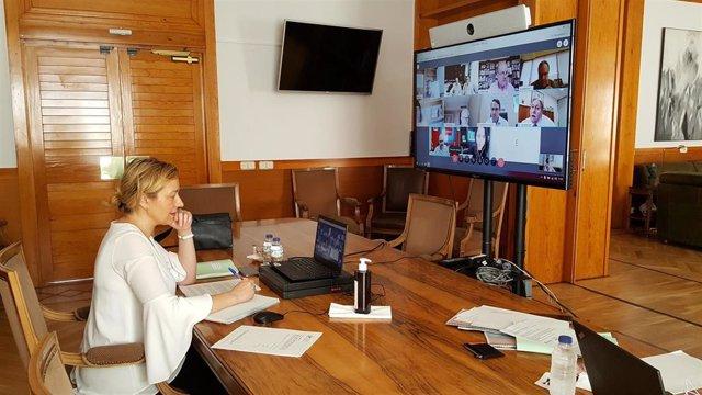 El Grupo Asesor de Economía Covid-19 ha mantenido un nuevo encuentro este miércoles, presidido por la consejera de Economía, Planificación y Empleo del Gobierno de Aragón, Marta Gastón