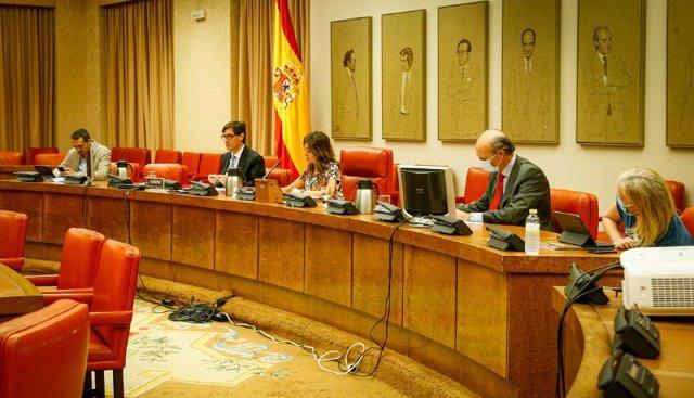 El ministro de Sanidad, Salvador Illa (2i), comparece en el Congreso en Comisión de su departamento, en Madrid (España), a 24 de junio de 2020.
