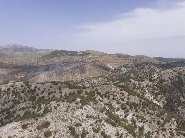 Incendio forestal en Gor