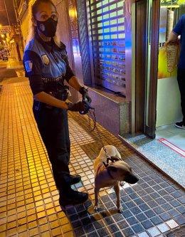 La Policía Local detiene en Tamaraceite a un hombre por maltratar a un perro e intentar agredir a los agentes