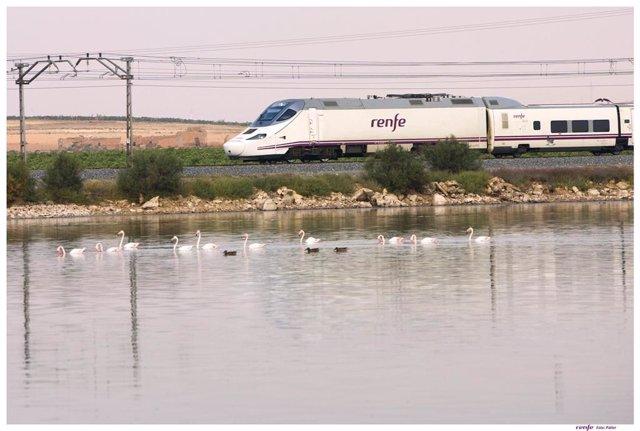 Tren Alvia Cádiz-Madrid
