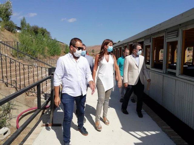 Visita al tren minero en Minas de Riotinto.