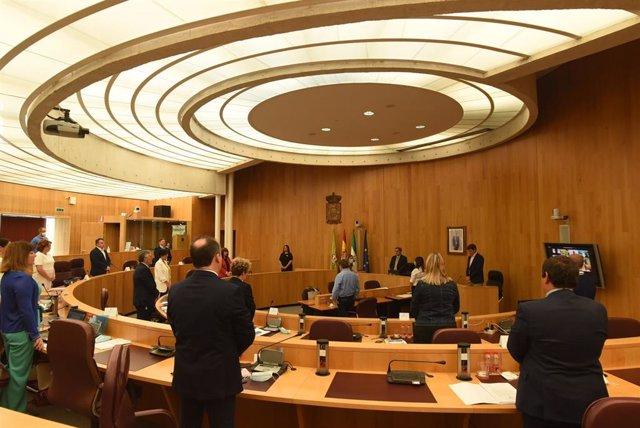 Pleno de la Diputación de Granada