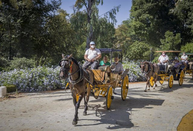 Cocheros de caballos de Sevilla pasean gratuitamente a ancianos residentes en el hogar del Hospital de la Caridad