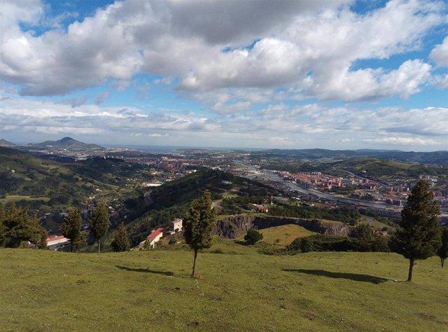 Imagen de la ladera del monte Arraiz