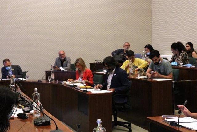 Comisión de Acción Exterior del Parlament.