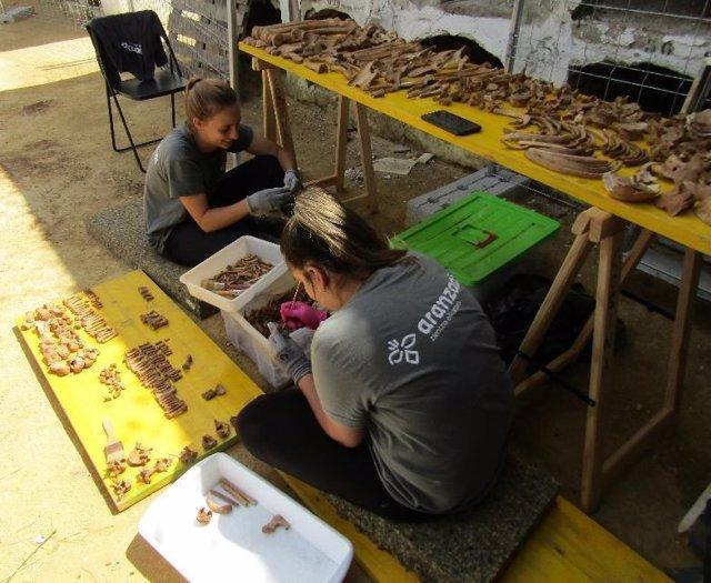 Miembros del equipo de investigación con huesos recuperados de la fosa de Pico Reja