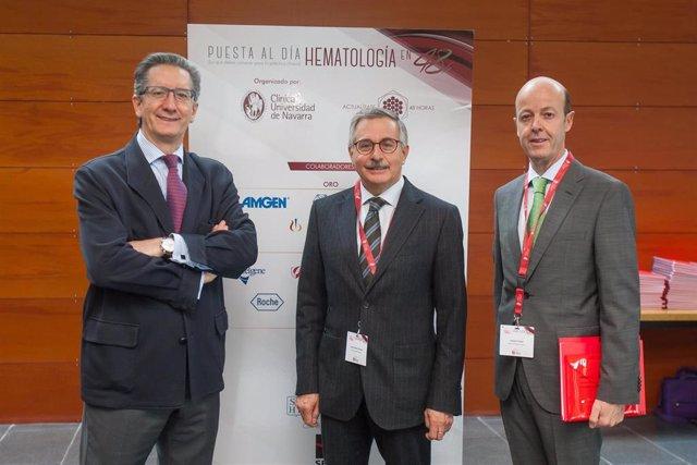 Los doctores Jesús San Miguel, José Antonio Páramo y Felipe Prósper, hematólogos de la Clínica Universidad de Navarra y coordinadores del curso (en una edición anterior).