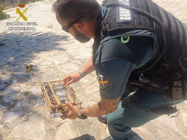 Un agente liberando los jilgueros
